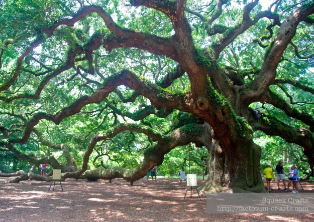 AngelOak_Full2_SC