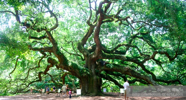 AngelOak_Full_SC