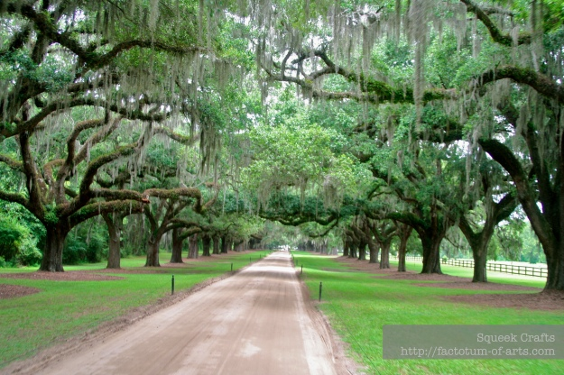 BooneHallPlantation_OakAvenue