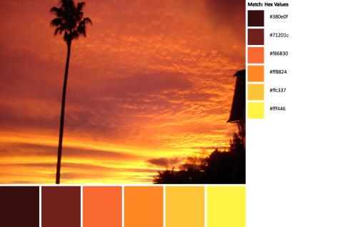 DSC03882-palette