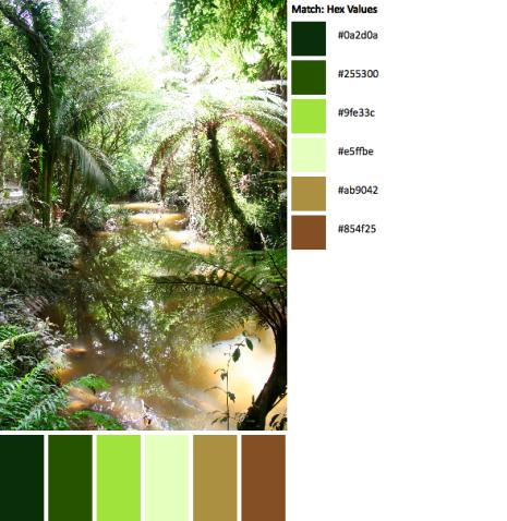 IMG_5074-palette