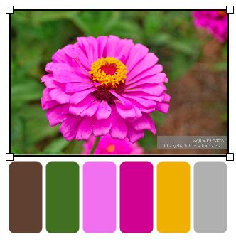 BooneHallPlantation_Flower1_palette