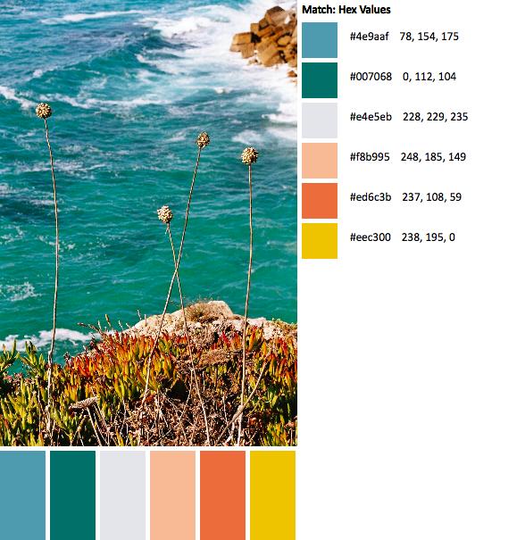 imm002_2-42-palette(1)