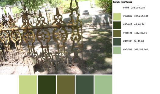 IMG_9737-palette
