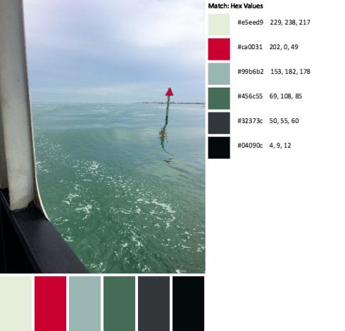 IMG_3925-palette